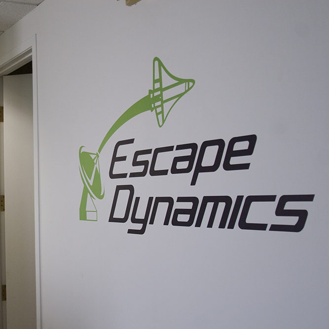 Custom Wall Decals for Enviromental Branding